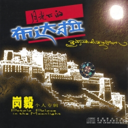 Potala Palace In the Moonlight